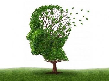 Bojite li se demencije petak