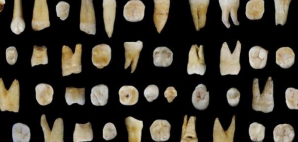 U Kini pronađeni ljudski zubi stari preko 80.000 godina
