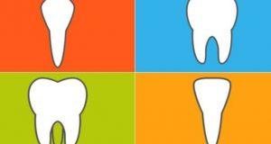 Funkcija zuba