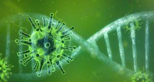 Šta je potrebno znati o korona virusu?